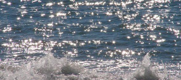Wasser-587x346.jpg